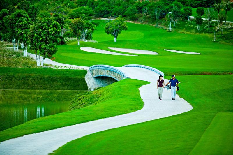 Dịch vụ giới thiệu sân Golf