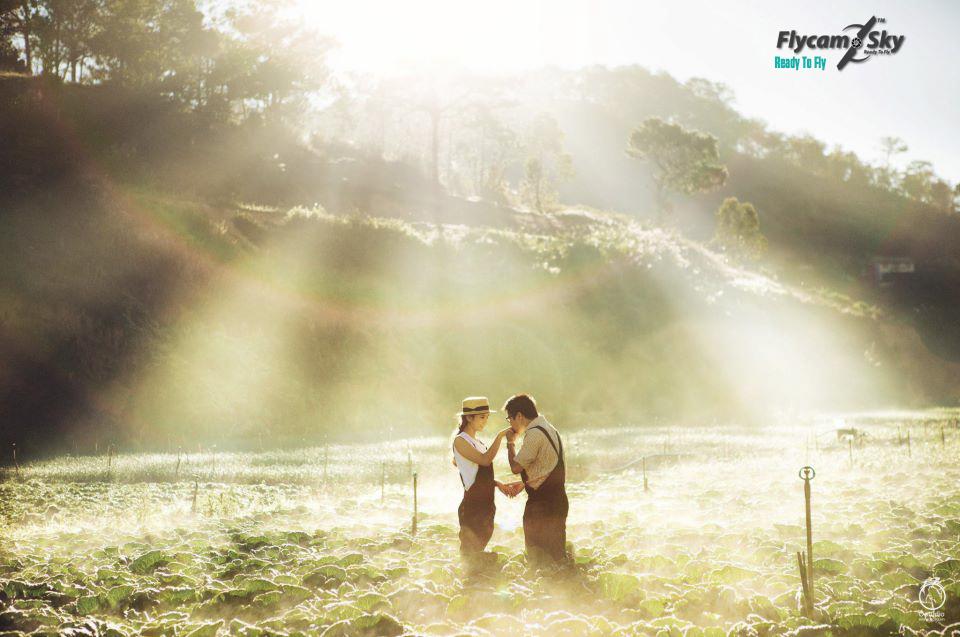 Ảnh cưới ở Đà Lạt